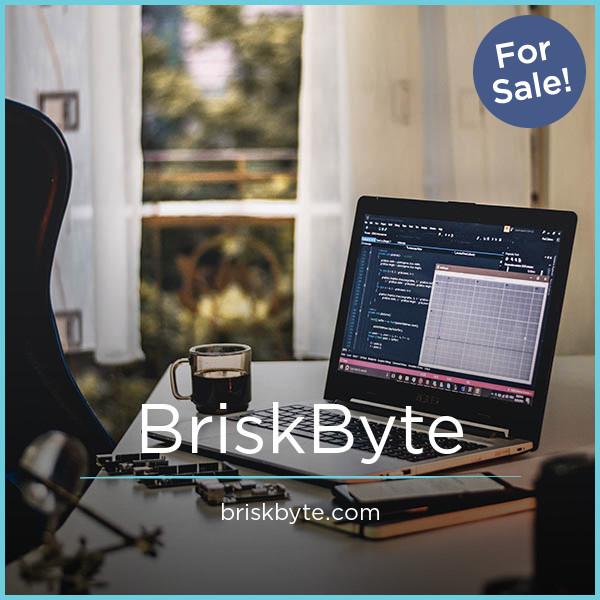 BriskByte.com