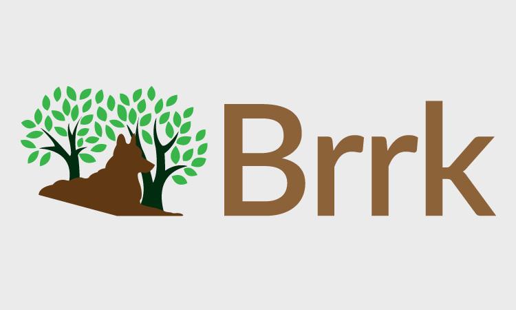 Brrk.com