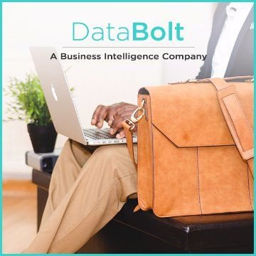 Name For a Business Intelligence Company