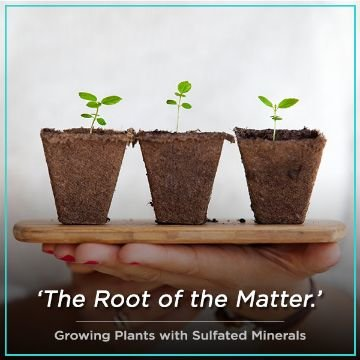 Name For growing plants with sulfated minerals