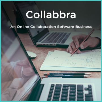 Name For An Online Collaboration Software Business