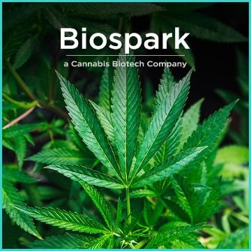 Name For a Cannabis Biotech Company