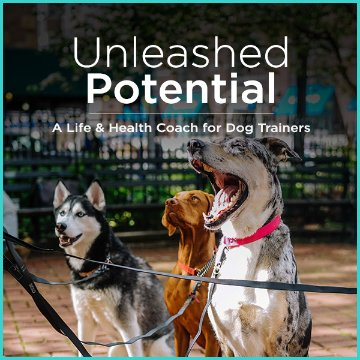 UnleashedPotentialCoach