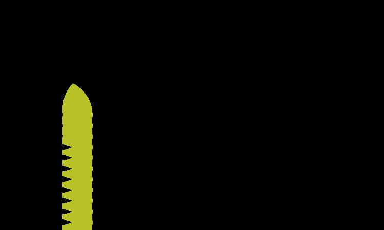 Verdexa.com