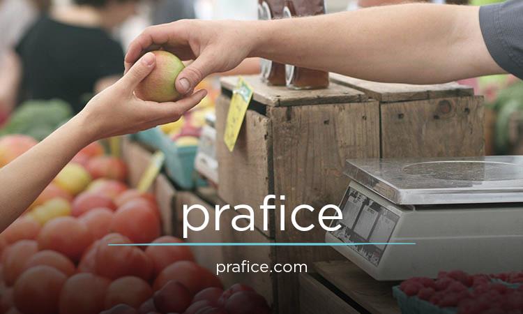 prafice.com