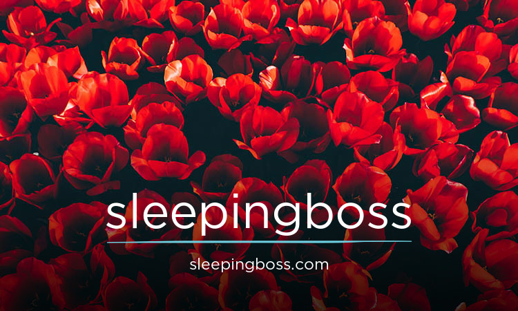 sleepingboss.com