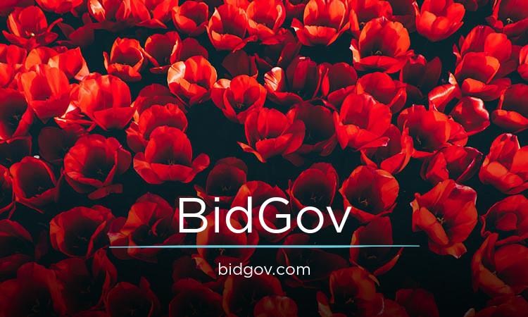 BidGov.com
