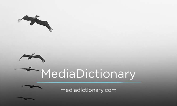 MediaDictionary.com