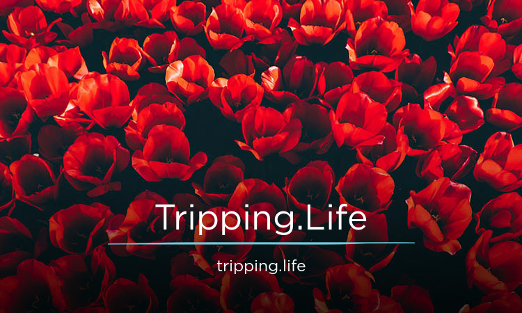 Tripping.Life