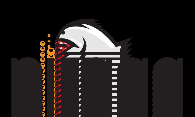 Piraga.com